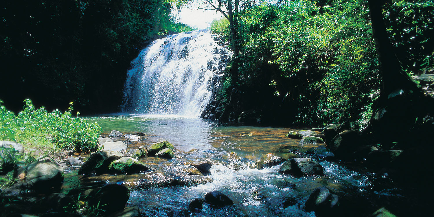 cairns-waterfalls | il Palazzo